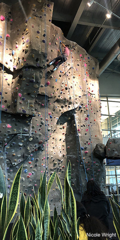 climber ascending rock wall